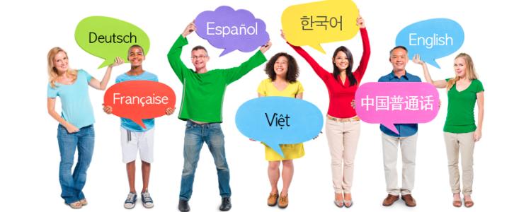 Ling Fluent: comment fonctionne cette méthode?