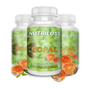 Qu'est-ce que Nutriloss où acheter, comment l'appliquer?