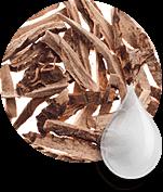 Princess Hair: des composants naturels du masque pour la poussée des cheveux