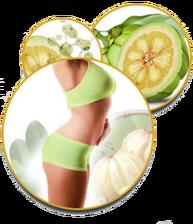 Vérifiez la promotion disponibles de la Garcinia Clean