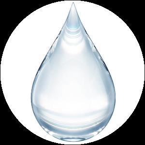 Bioretin: Des ingrédients sélectionnés pour leur efficacité