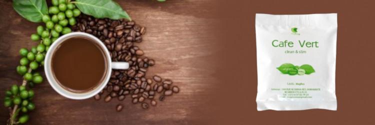 Cafe Vert - opinions du forum, dosage, dosage