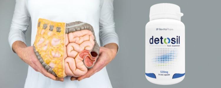 Detosil Slimming - ingrédients naturels seulement