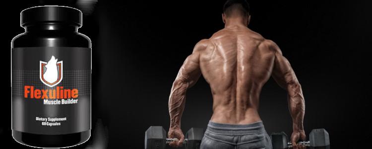 Quel est le prix Flexuline Muscle Builder? Où les acheter